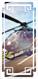 【双子号】直升机,价值20万